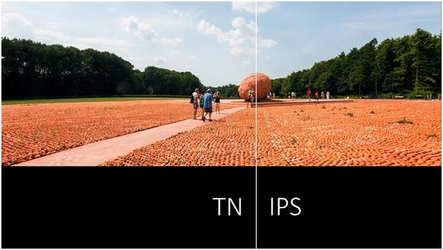 توجه به TN و IPS در خریدمانیتوراستوک